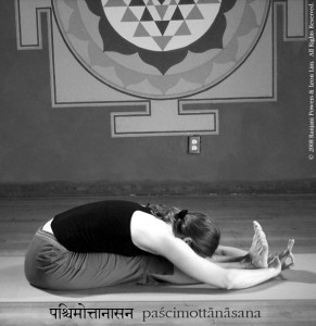 pilates yoga cagliari ppm  le 2 sedi centro e via scano